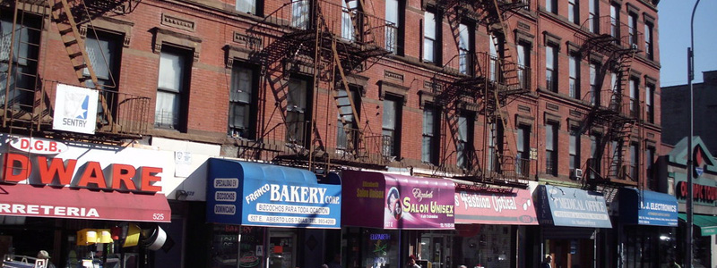 the bronx visitors guide