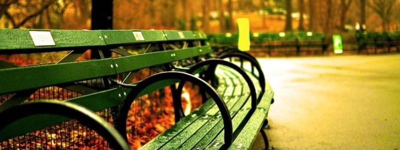 New York City Autumn