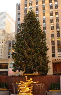 https://www.responsiblenewyork.com/wp-content/uploads/2021/06/rockefeller-center-christmas-tree-with-lights.jpg