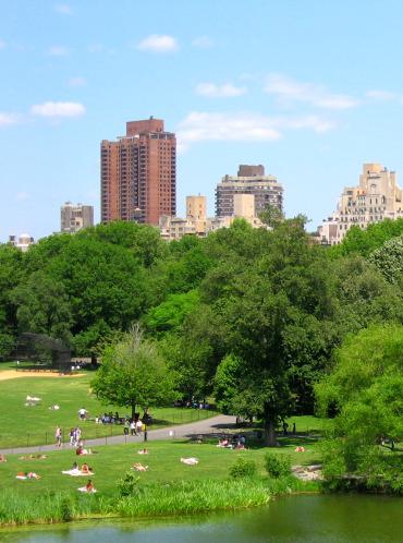 Summer in Central Park